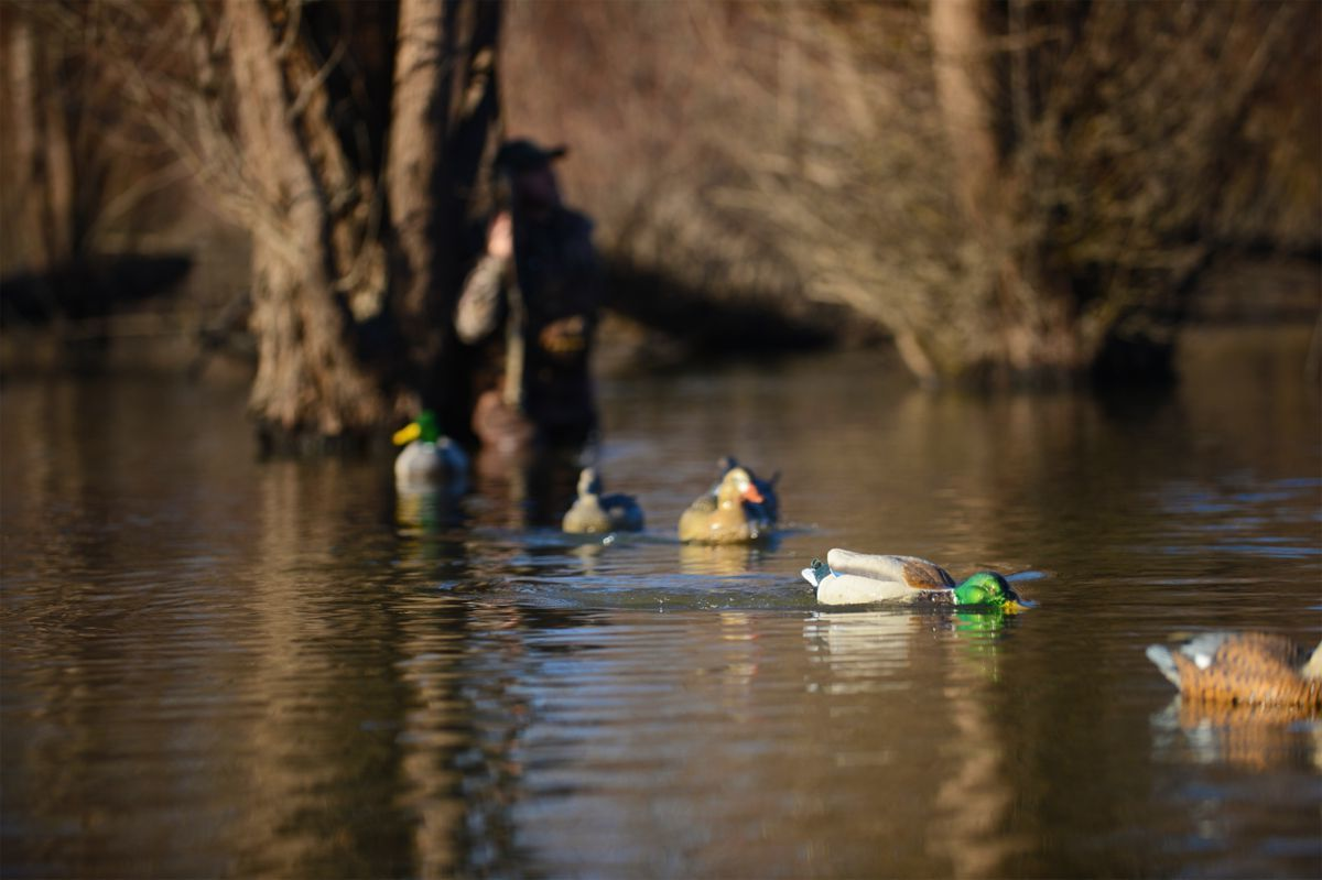 Greenhead Gear® Swimmer-Chaser Combo