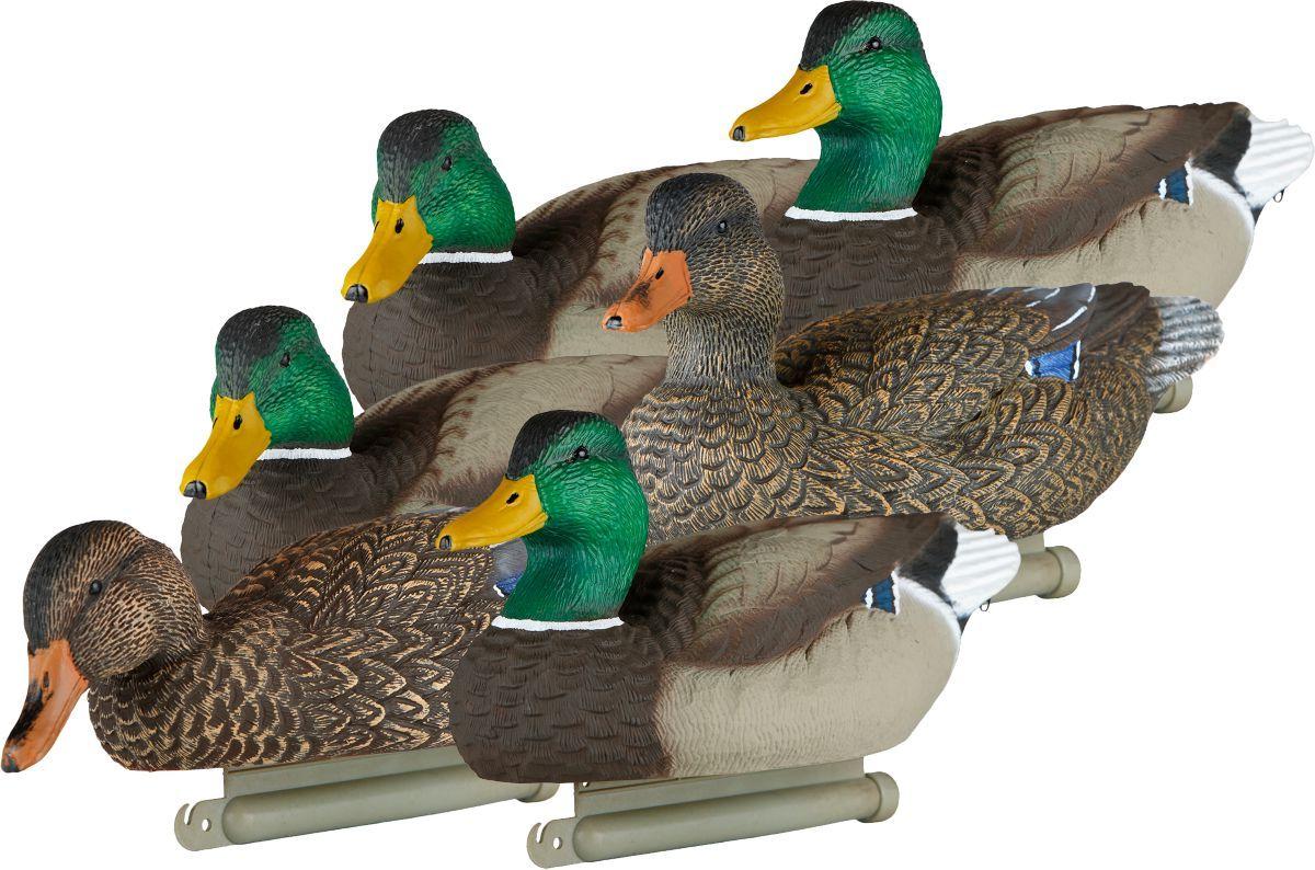 Lucky Duck Deception Series – Six-Pack