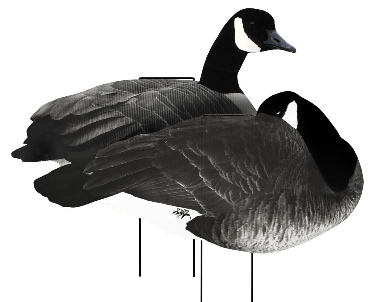 White Rock Decoys Flocked-Head Silhouette Canada Goose Decoys – Loafer Pack