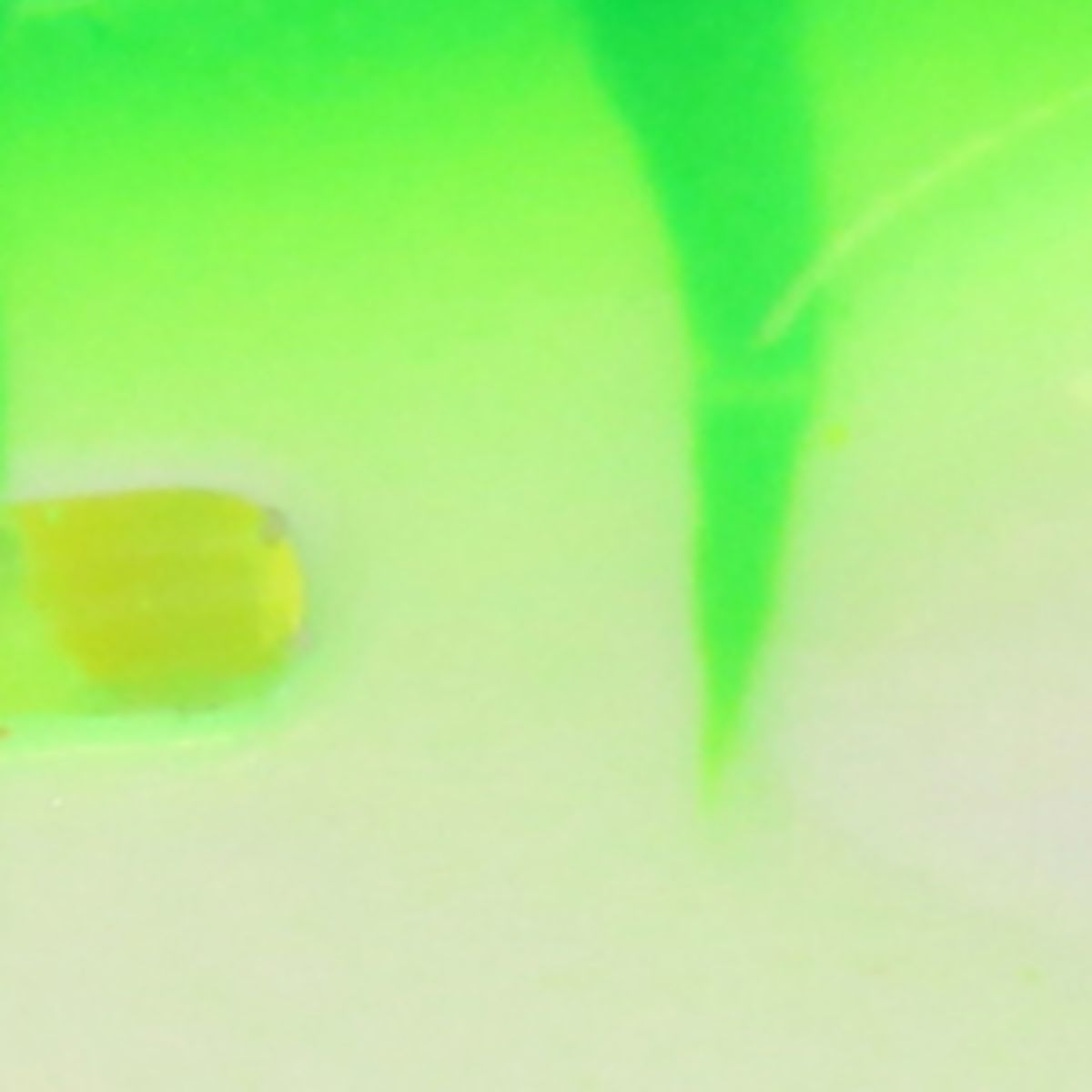Northland Glo-Shot Spoon