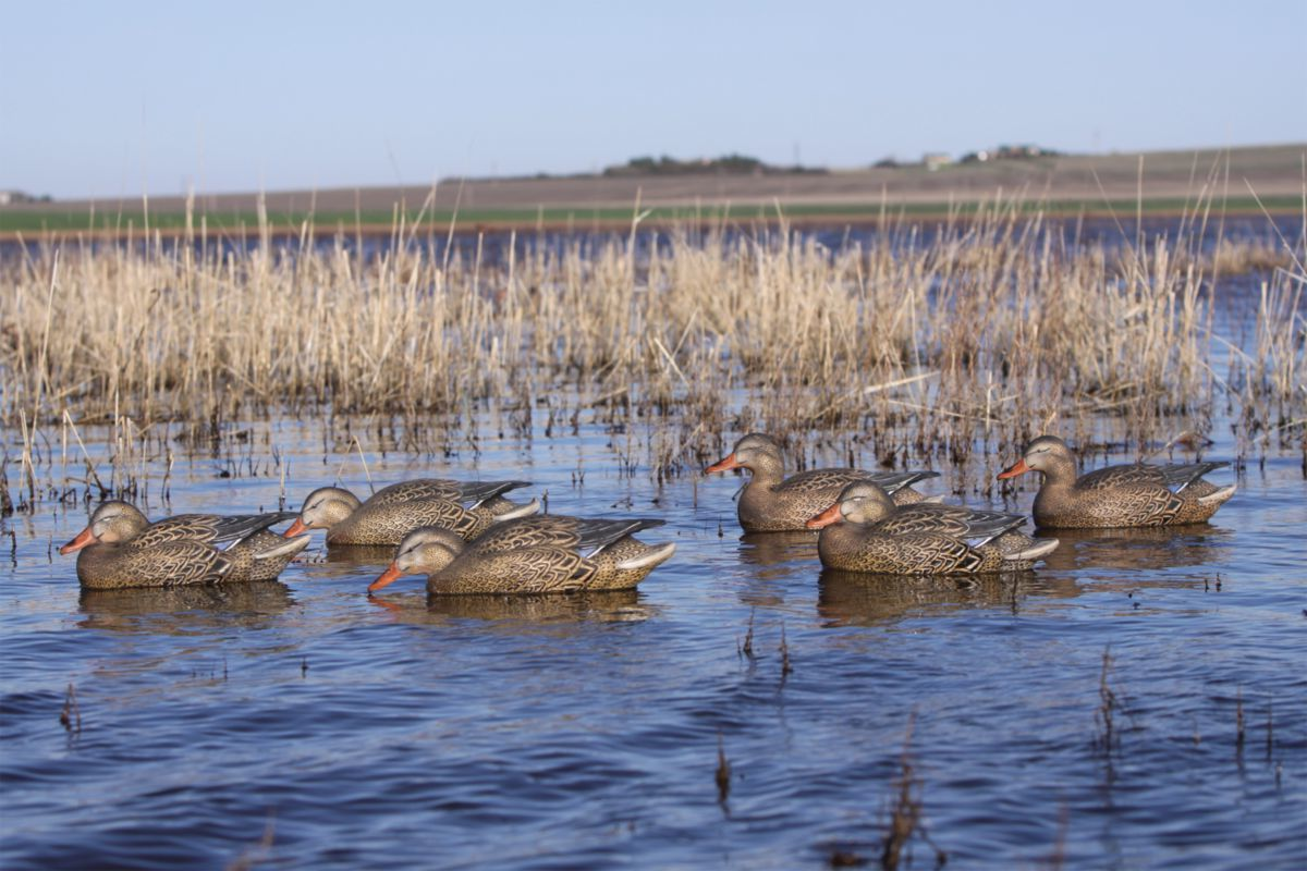 Greenhead Gear® Pro-Grade Early-Season Hen Mallard Decoys