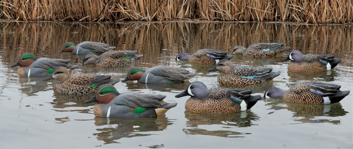 Avian-X Topflight Teal Outfitter Decoys – 12-Pack