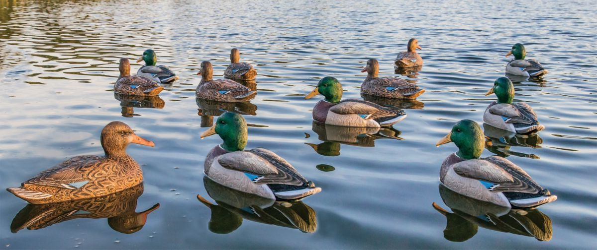 Cabela's Northern Flight® Big Spread F.L.D. Mallard Duck Decoys