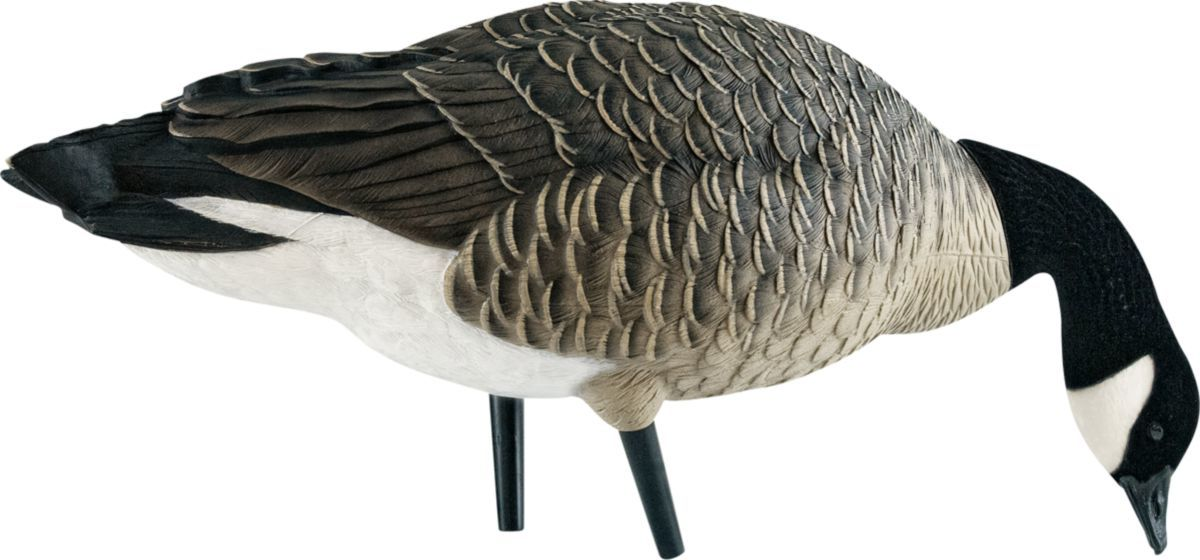 Avian-X Outfitter Lesser Canada Outfitter Goose Decoy Pack with Twelve-Slot Decoy Bag
