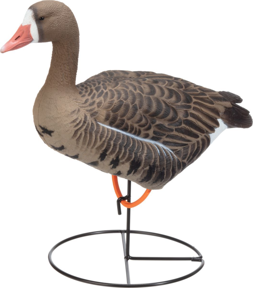 Dakota Decoy White-Fronted Full-Body Goose Decoys