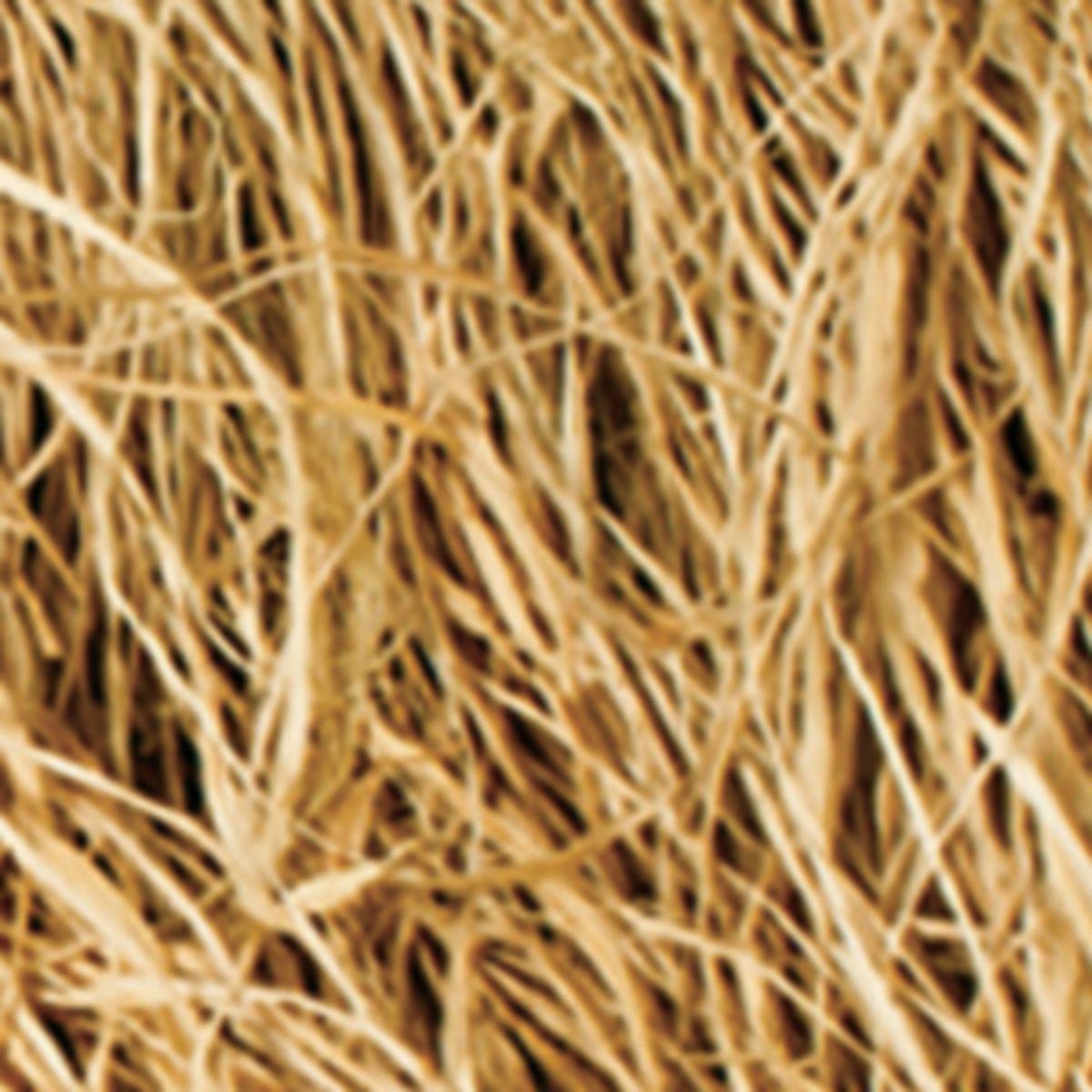 Hard Core E-Z Grass