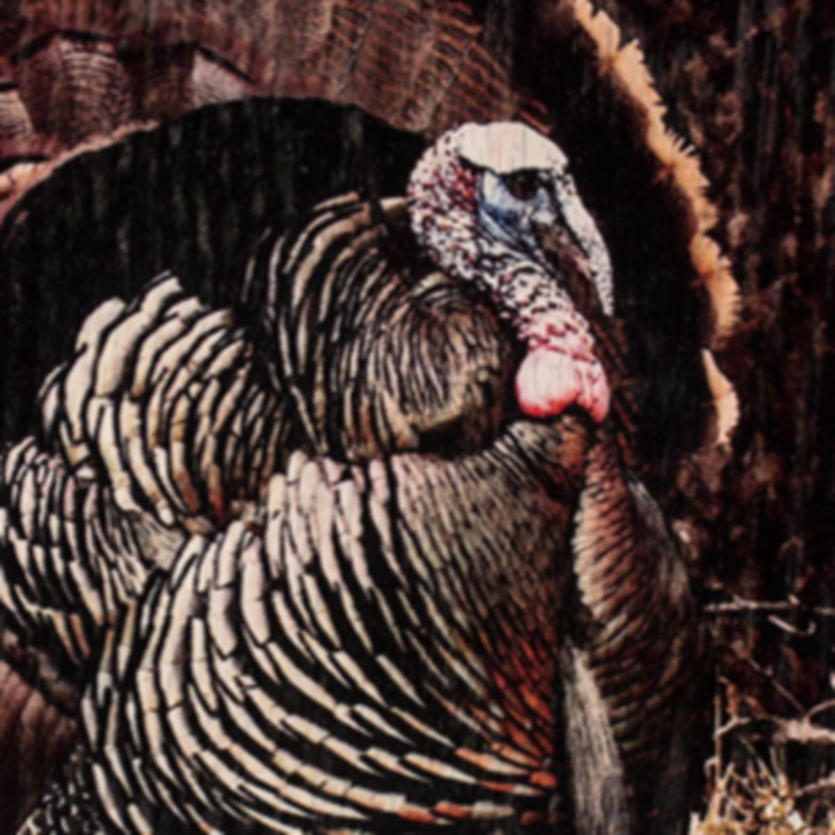 Walnut Hollow® Deluxe Turkey Kit with Turkey Print