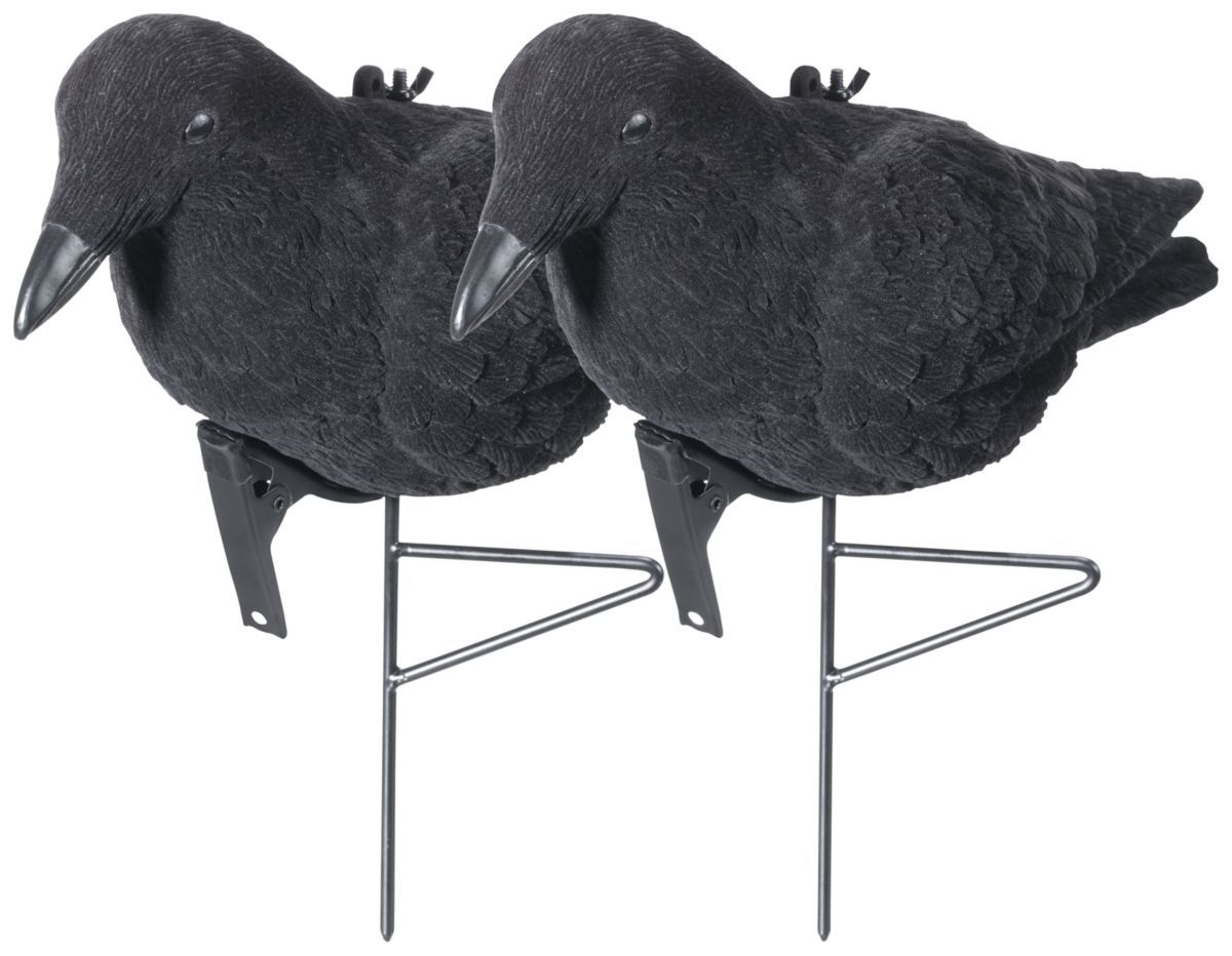 Cabela's Flocked Crow Decoy