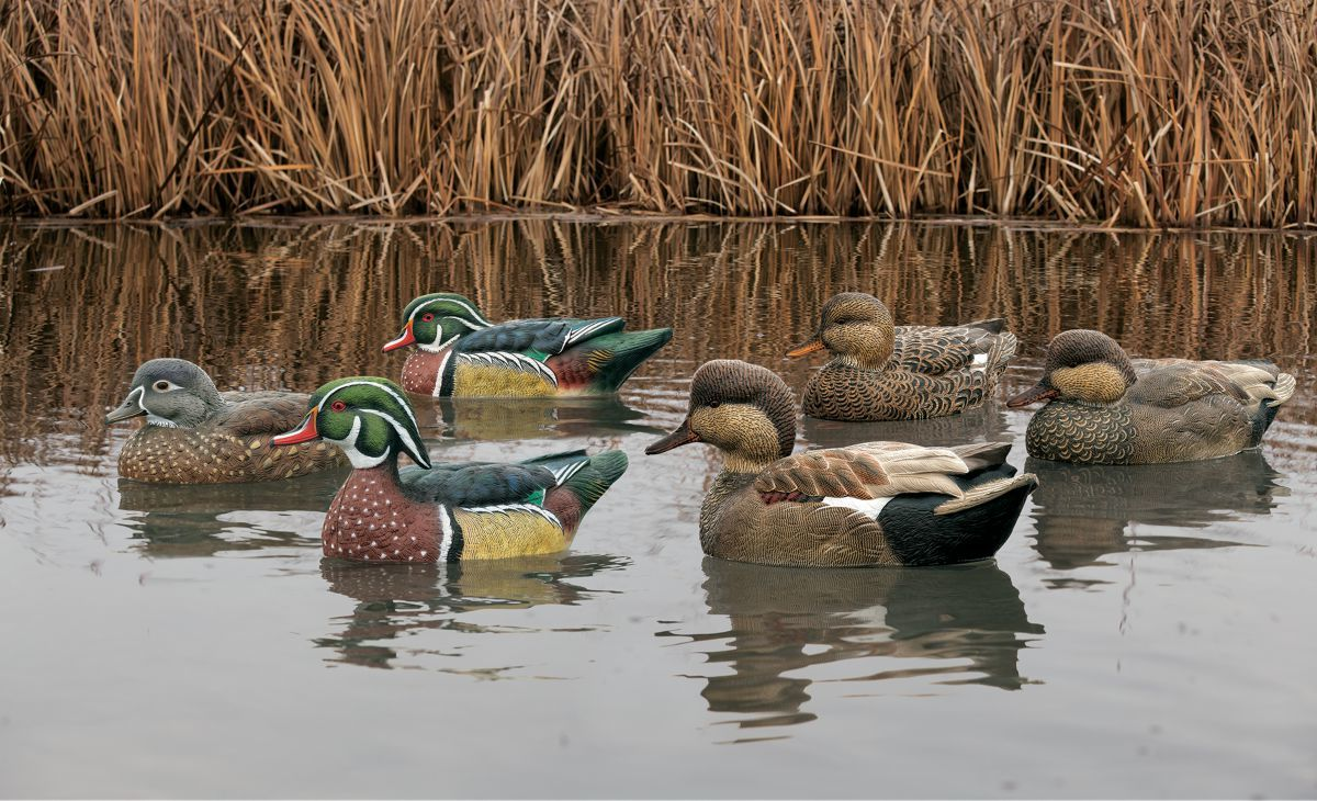 Avian-X Mississippi Flyway Decoy Pack