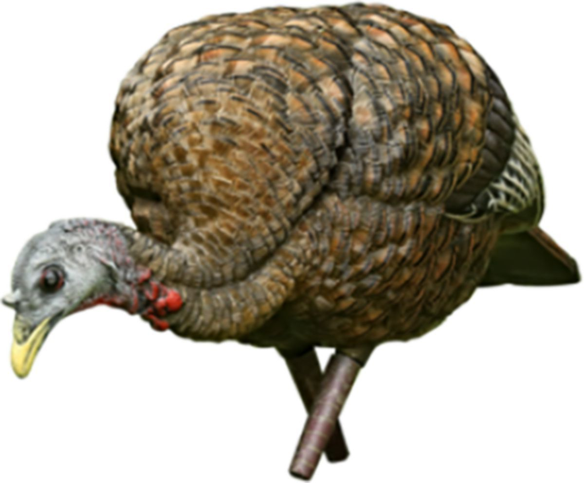 Avian-X LCD Collapsible Feeder Hen Turkey Decoys