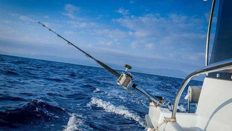 The best saltwater spinning reels — OutdoorMiks
